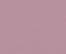 Roma Pink Trans | Disprodec